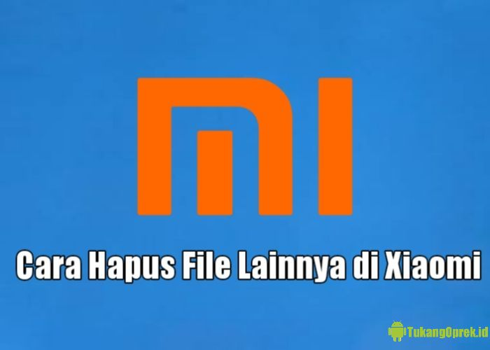 Cara Menghapus File Lainnya di HP Xiaomi